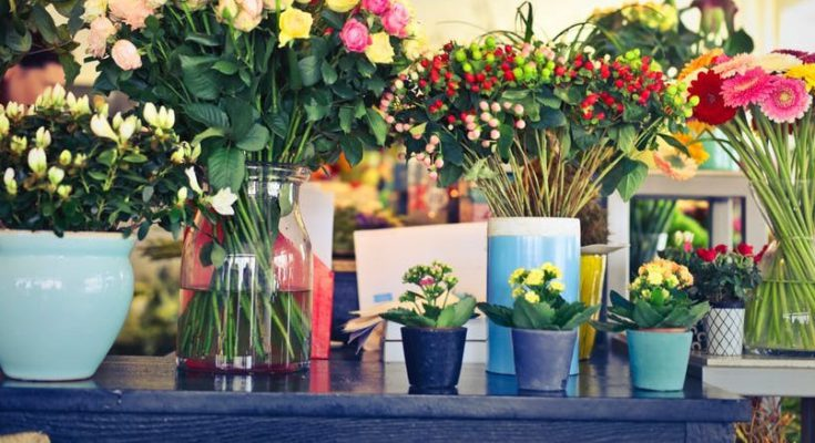 Different Types of Flower Pots