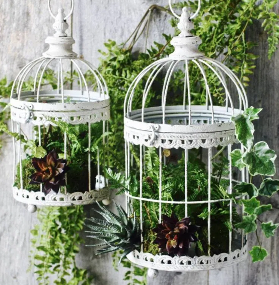 two white bird cage planters hanging in front of a white wall