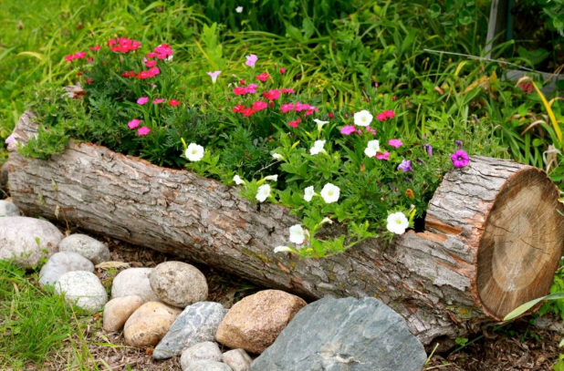 a large brown log planter placed in the garden with rocks in front of it