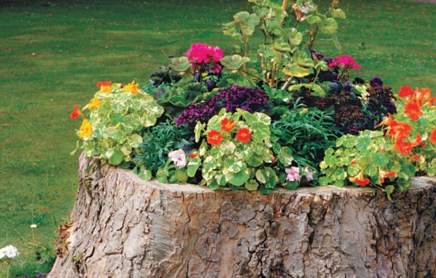 a large tree stump planter that has all sorts of different colors of flowers on it