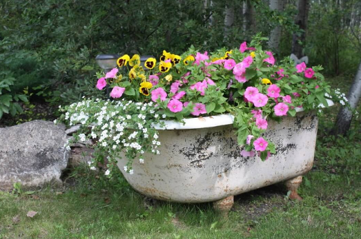 an isolated rustic white bathtub with pink and yellow flowers in it placed on grass