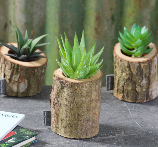 three oak bark planters beside each other placed on a gray table