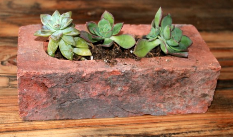 a single red brick with three green flowers on it placed on a brown coffee tab