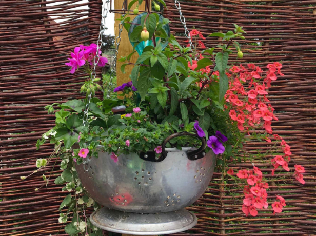 a silver colander hanging from a brown wooden post with pink and purple leaves coming out of it