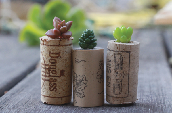 three wine corks placed next to each other with a tiny flower piece sticking out of them