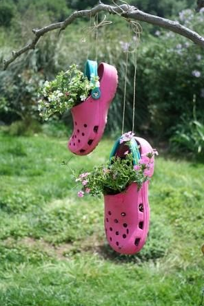 a pair of pink croc shoes hanging from a branch with flowers inside them
