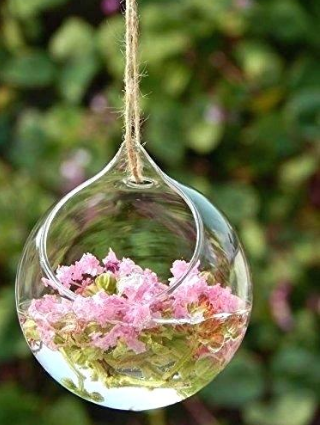 a glass orb with pink flowers in it hanging down from a thin brown rope
