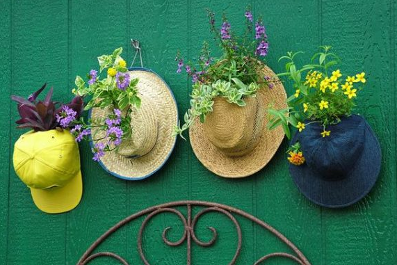 four hats nailed to a green wall with yellow and purple plants on each one