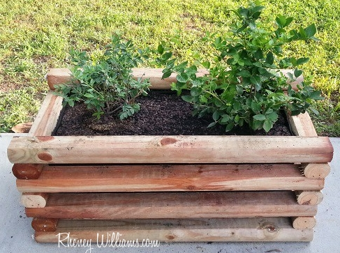 a rectangular log planter box with green plants in it