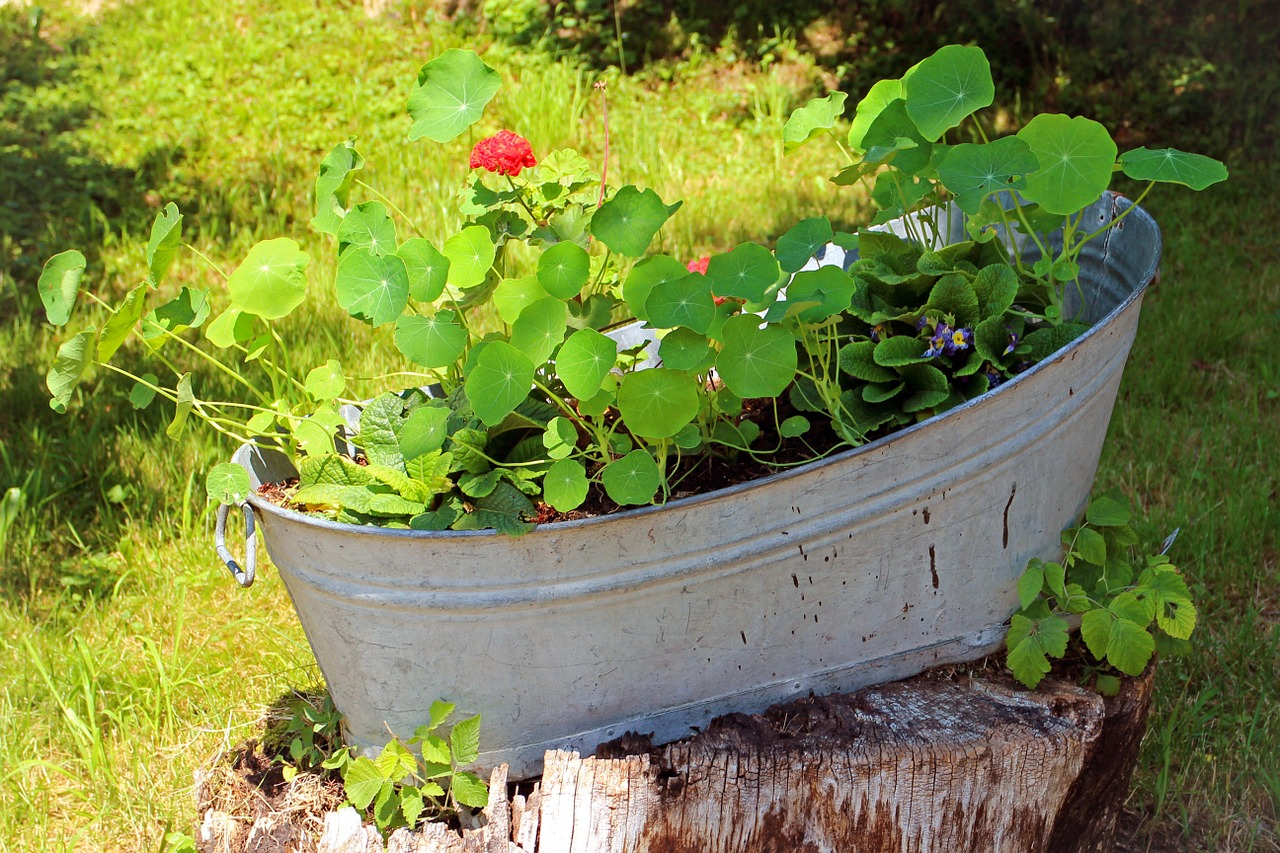 an old washtub with green leaves and soil inside placed on a brown wooden stand