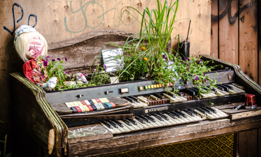an old piano placed against a brown wall with plants and flowers swaying out of it