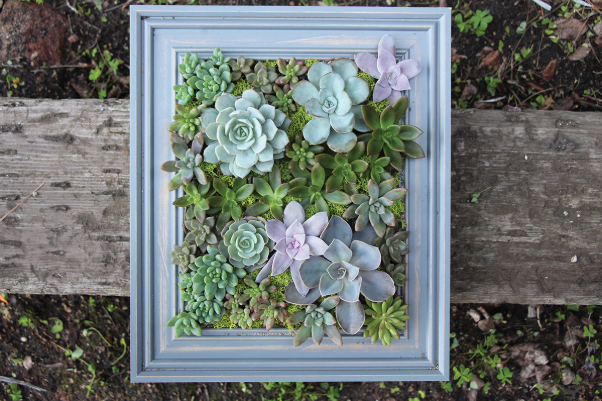a picture frame filled with flowers nailed to a piece of wood