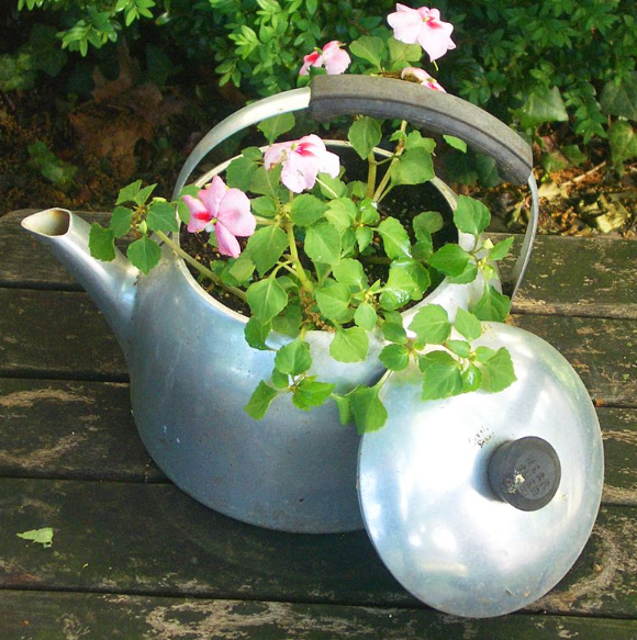 a silver tea kettle planter sitting on a brown wooden table