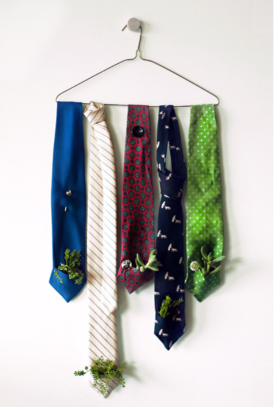 five different color suit ties hung on a clothes hanger with small plants in the pocket of them