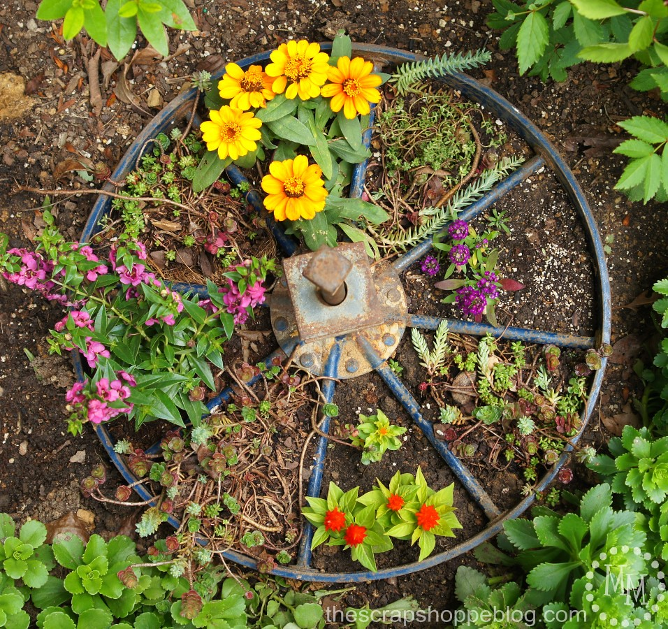 a metal wagon wheel placed in soil with yellow and pink and green flowers inside each spoke