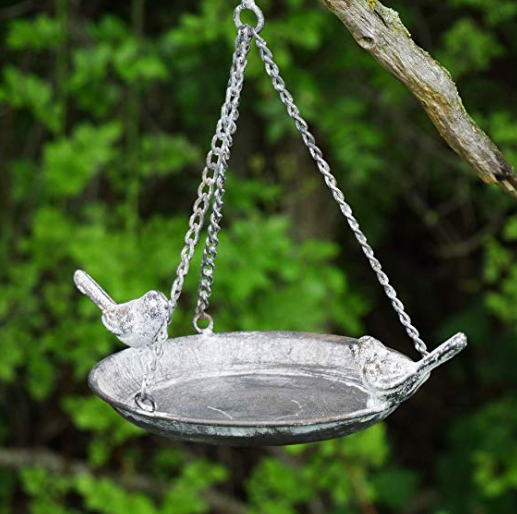 A silver plate bird feeder hanging from a tree branch.