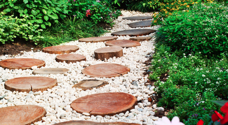 A bunch of tree stump stepping stones making a pathway in a garden.
