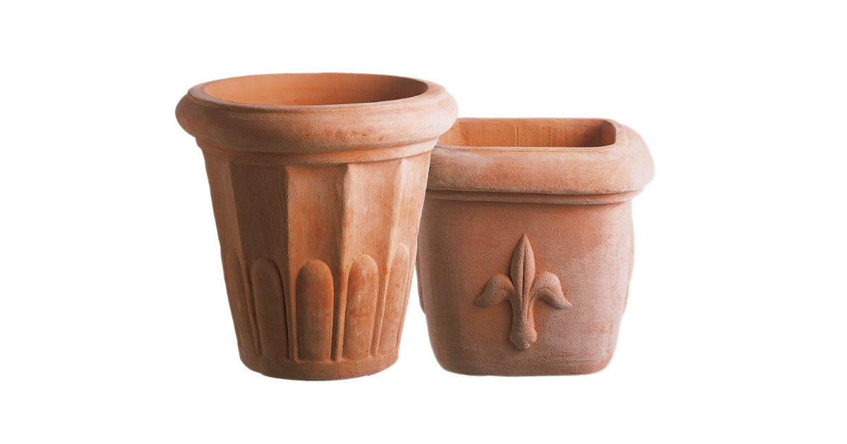 Terracotta pots are best for aloe vera plants.