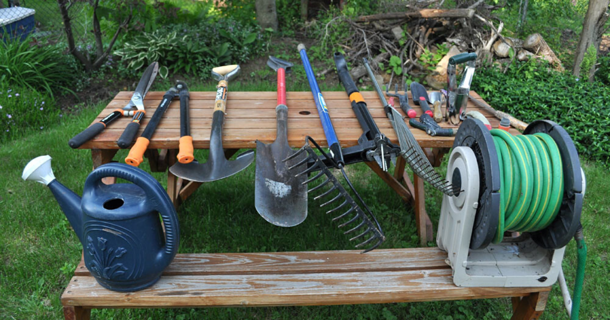 Cleaned and disinfected garden tools ready for gardening.