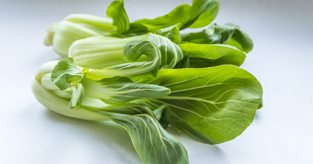 Bok Choy is one of the best plants to grow in containers.
