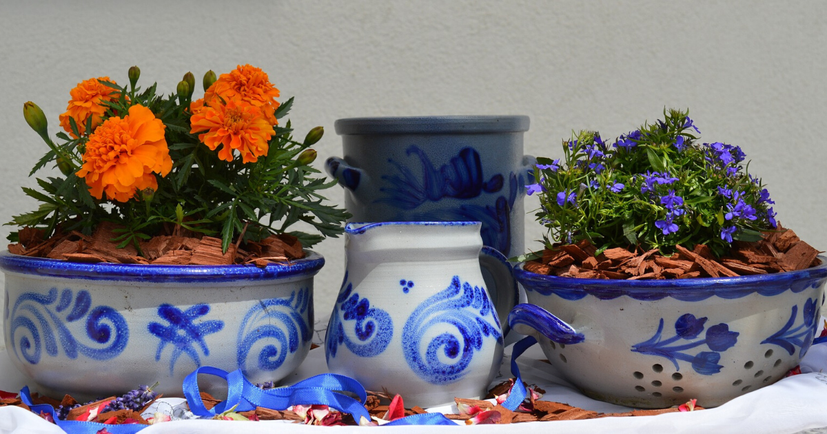 Flower plants in ceramic planters.