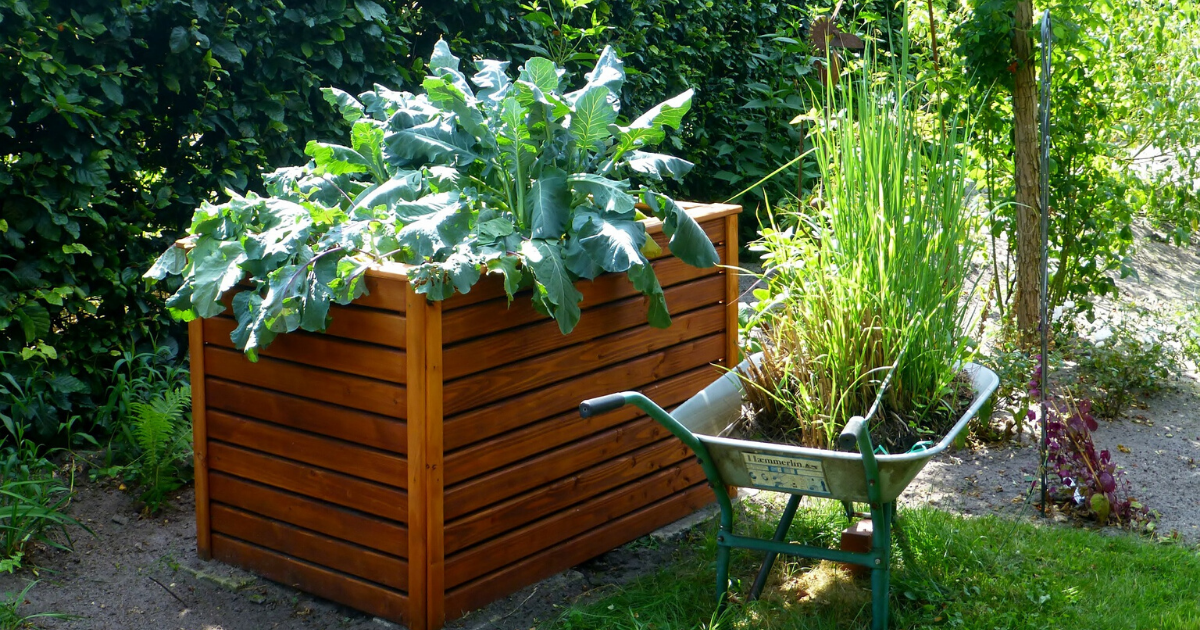 A tall raised bed vegetable garden.
