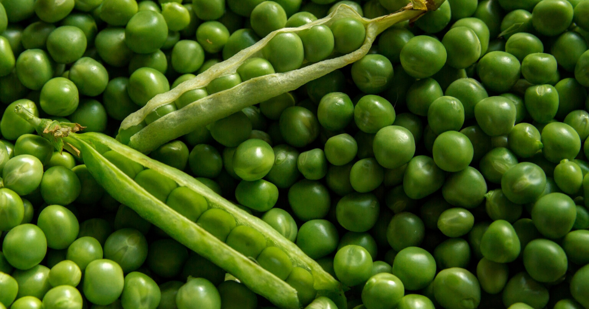 Peas can be an excellent addition to multiple recipes.