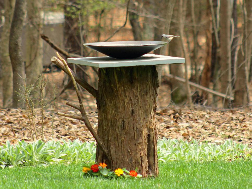 A tree stump birdbath with a water dish at the top.