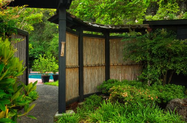A garden with a bamboo backdrop.