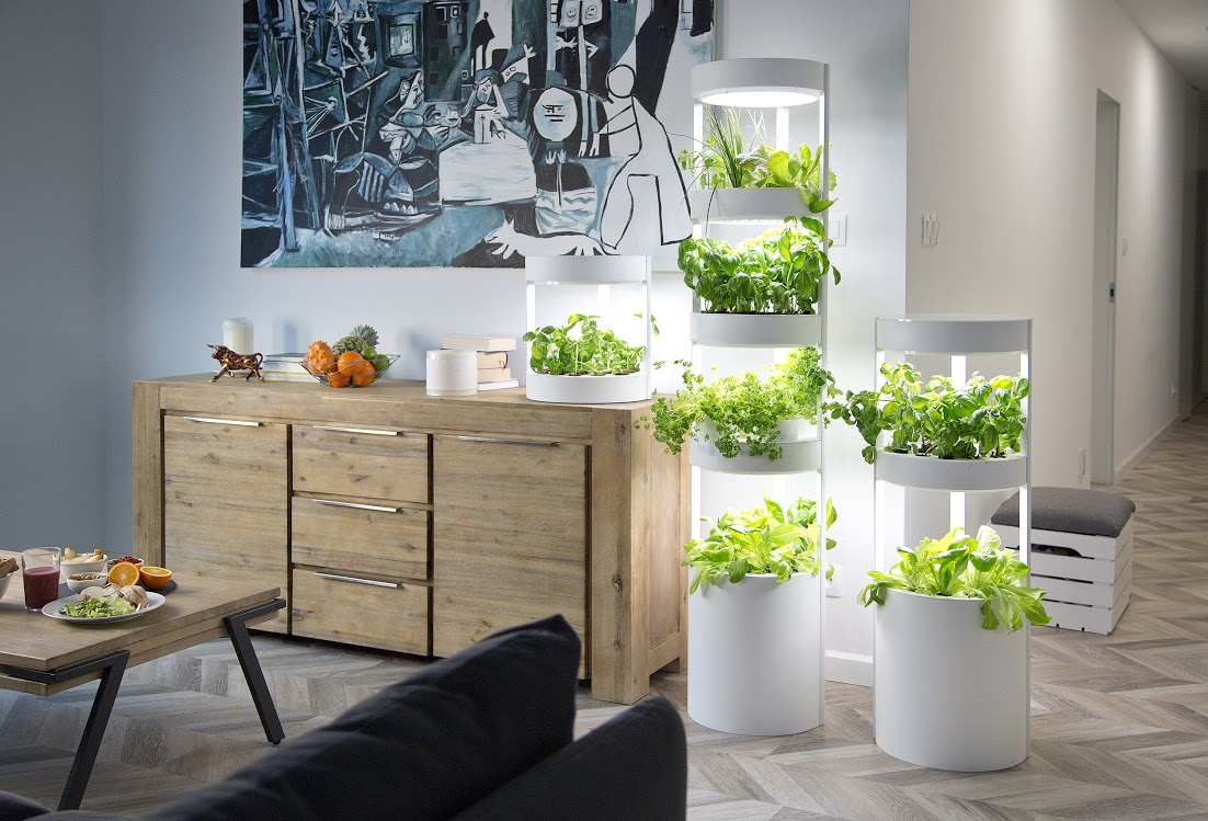 Growing vegetables indoors in a white hydroponics structure.