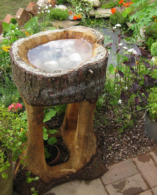 A carved out tree stump turned into a birdbath