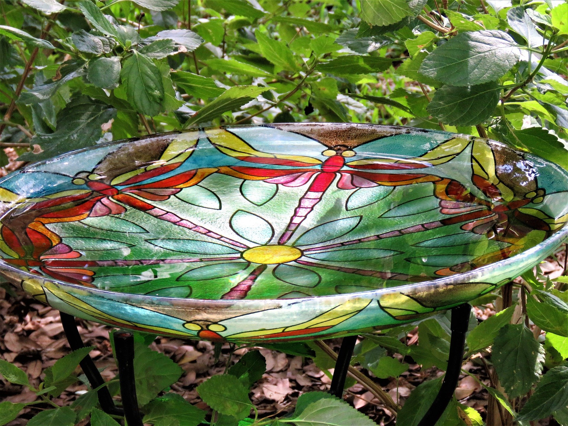 A glass dish with colourful dragonflies birdbath.