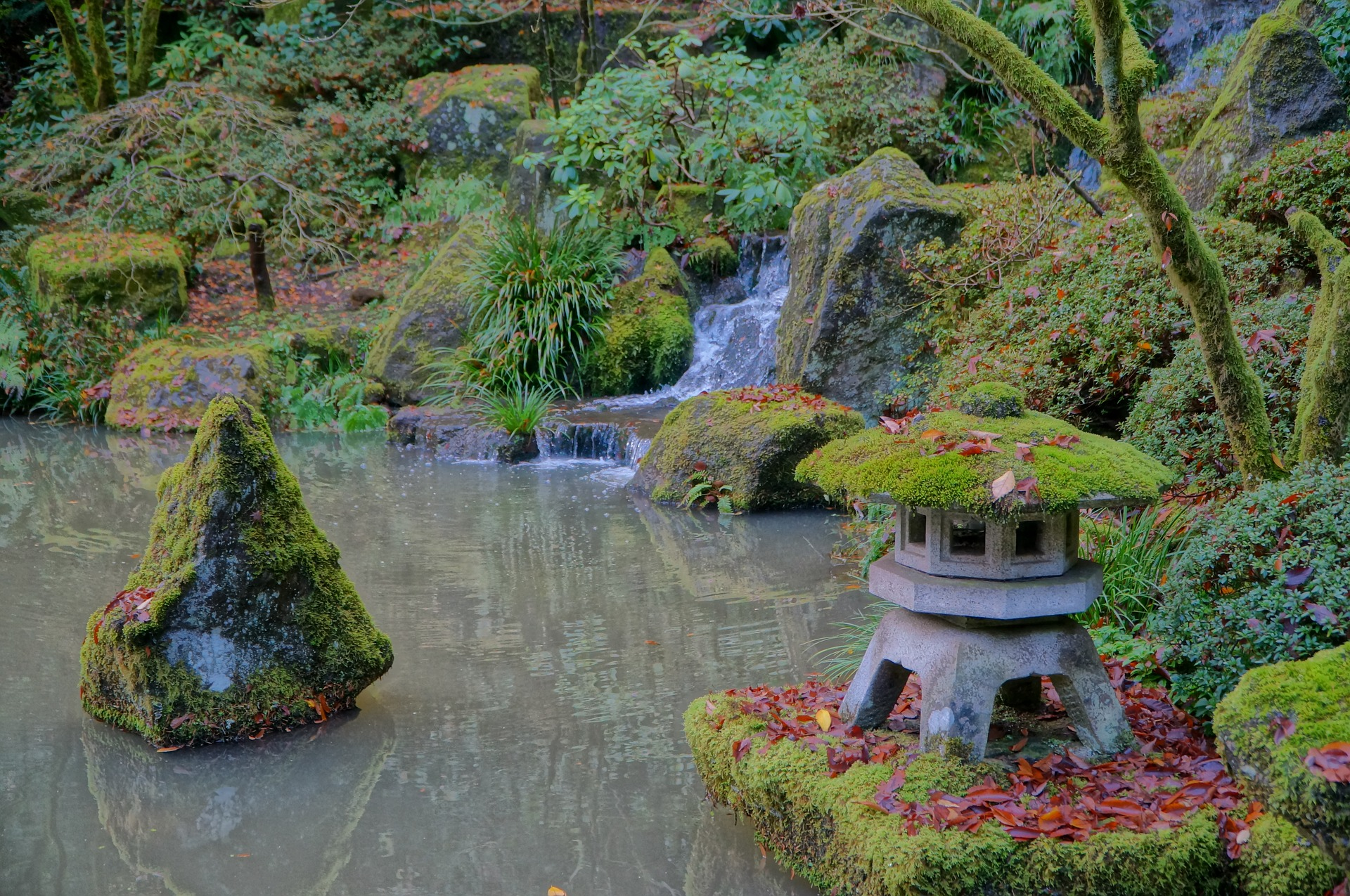 A pond, waterfall, and a lantern covered by moss.