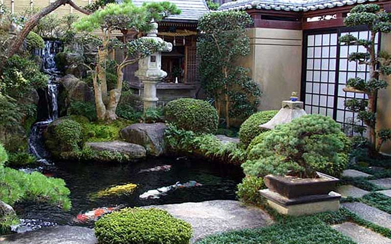 A pond, waterfall, and koi.