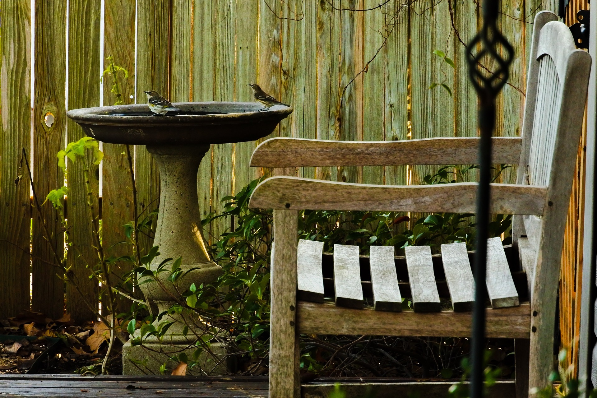 A chair and a birdbath in the garden's corner.