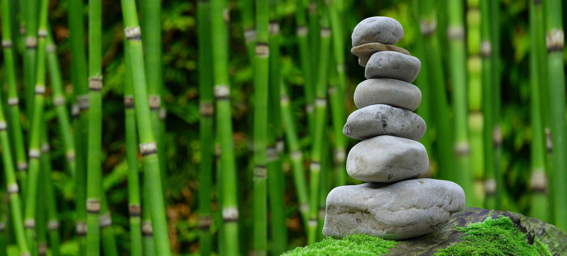 A landscape of stacked stones in a garden.