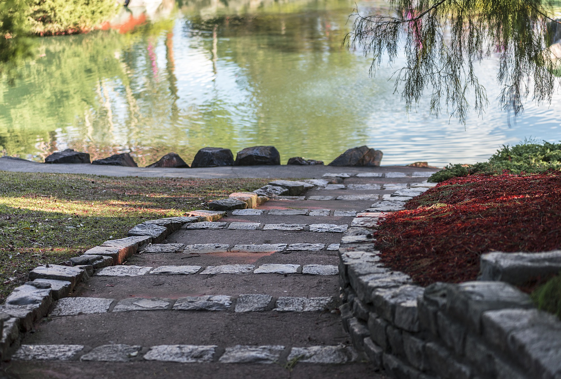 Stone paths going towards a large green pond.