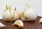 A bulb of sprouting garlic.