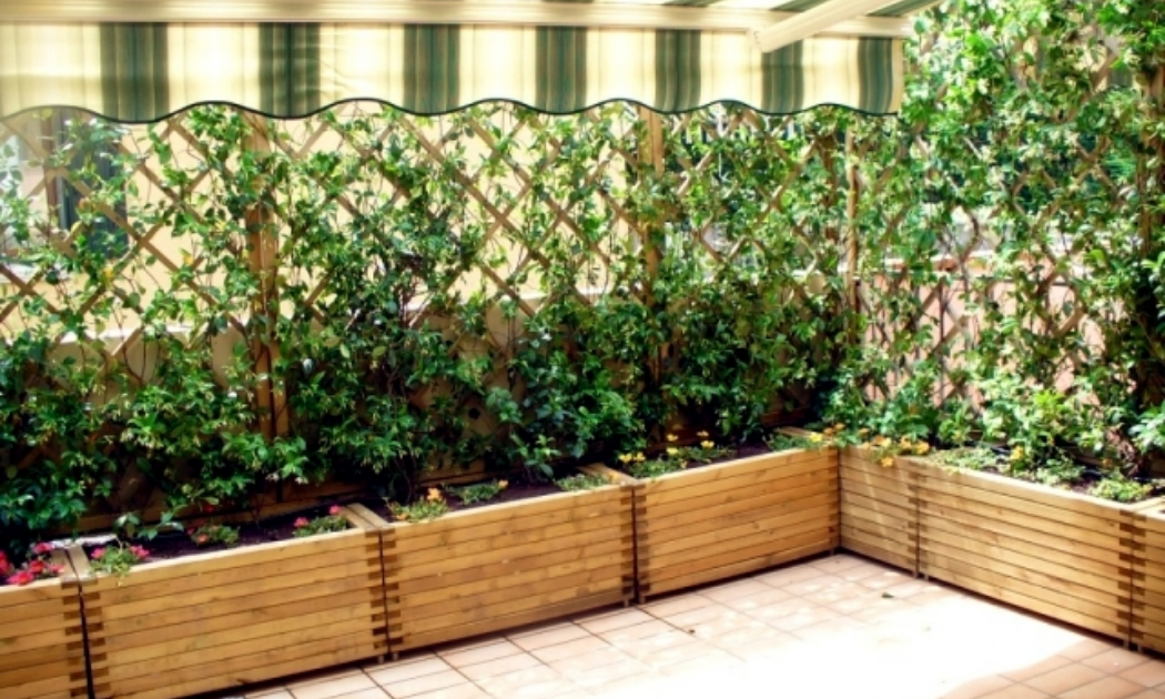 Wooden raised planter with a wind barrier on a terrace.