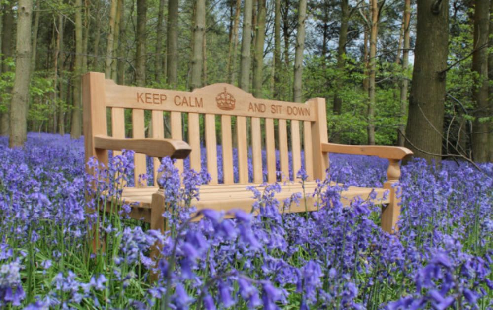 A brown wooden bench with the words keep calm and sit down on it resting in the center of a lavender field.