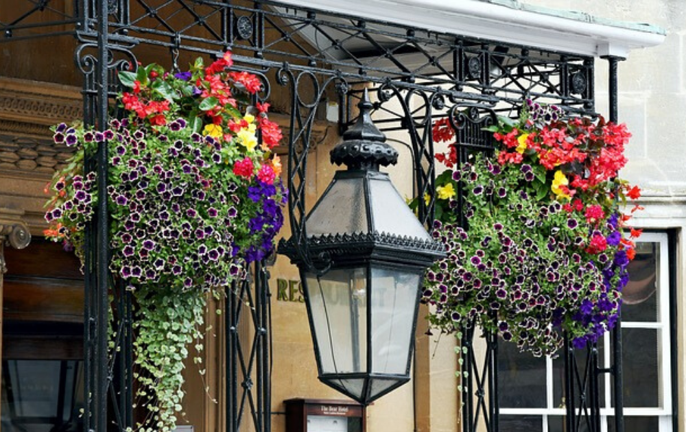 Two baskets of hanging plants with colorful flowers.