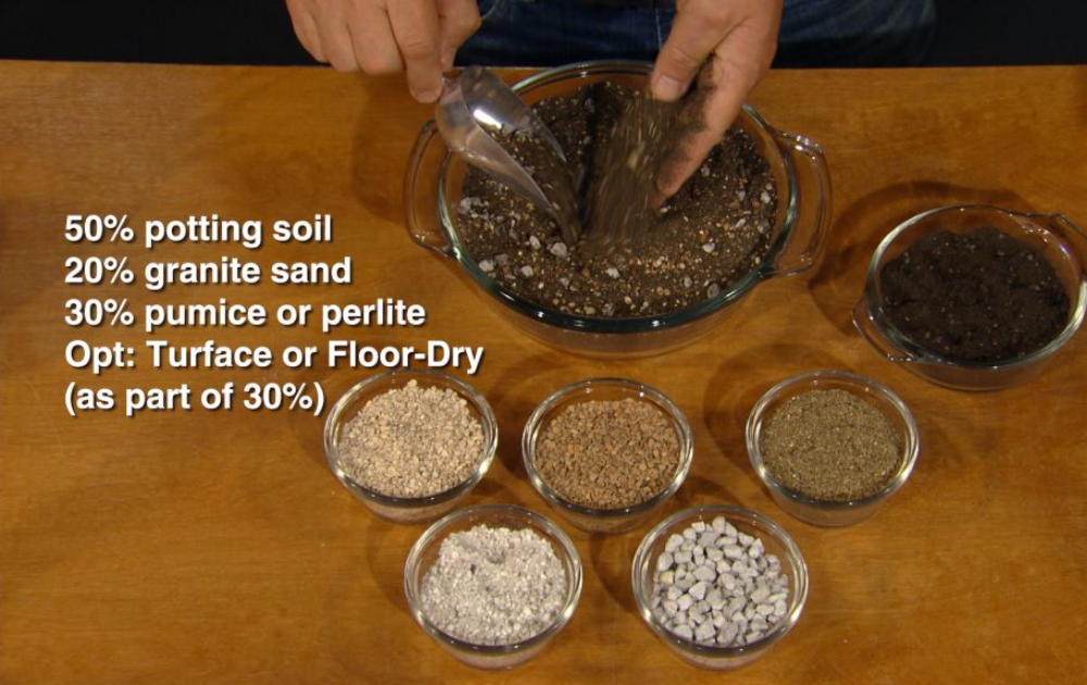 Complete ingredients for succulent potting mix.