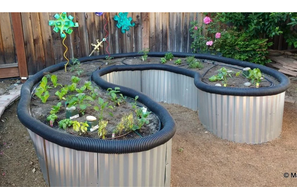 Corrugated galvanized steel raised bed with black flexible hose lining.