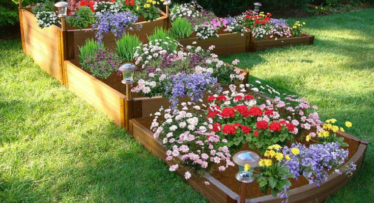 Multi-tier raised beds with colourful flowering plants.