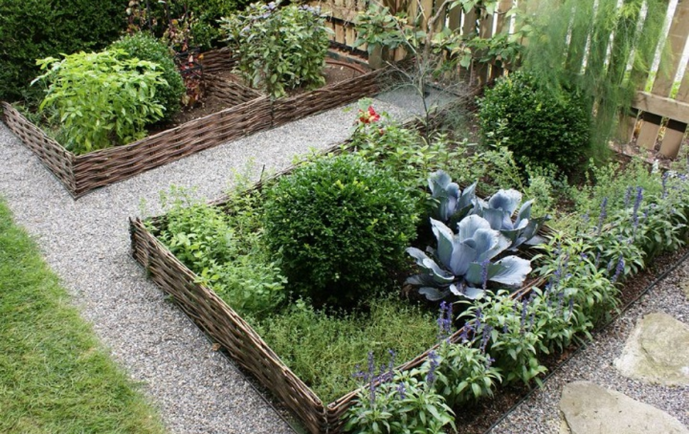 One rectangular and two square wattle raised beds.