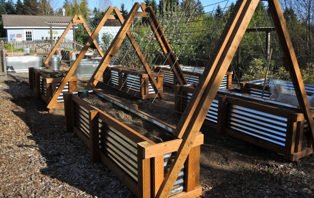 Six galvanized steel raised beds accentuated with trellises to form green tunnels.