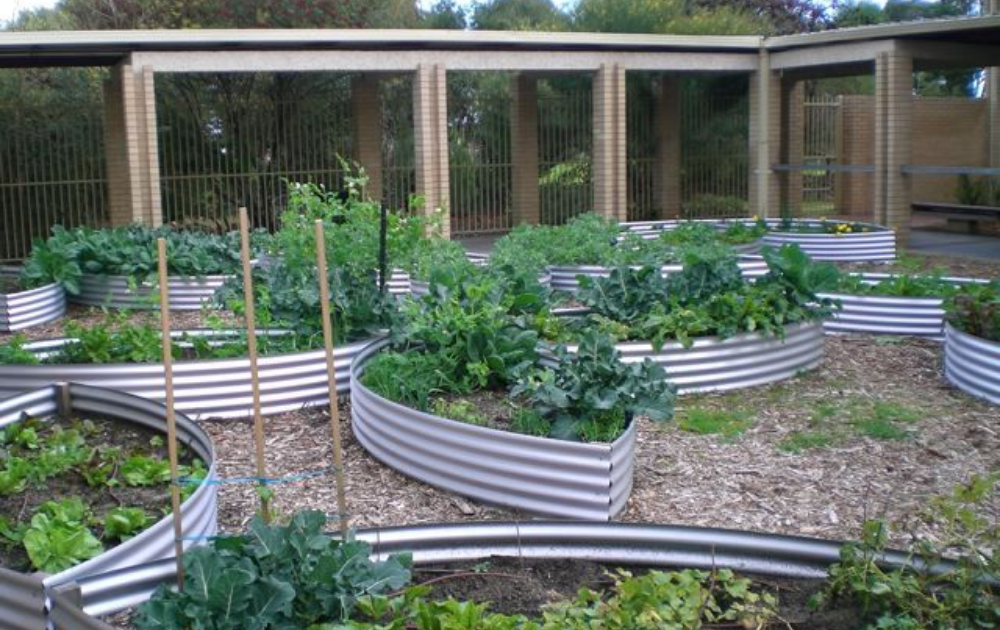 A group of corrugated galvanized steel raised beds in a boat-inspired shape.