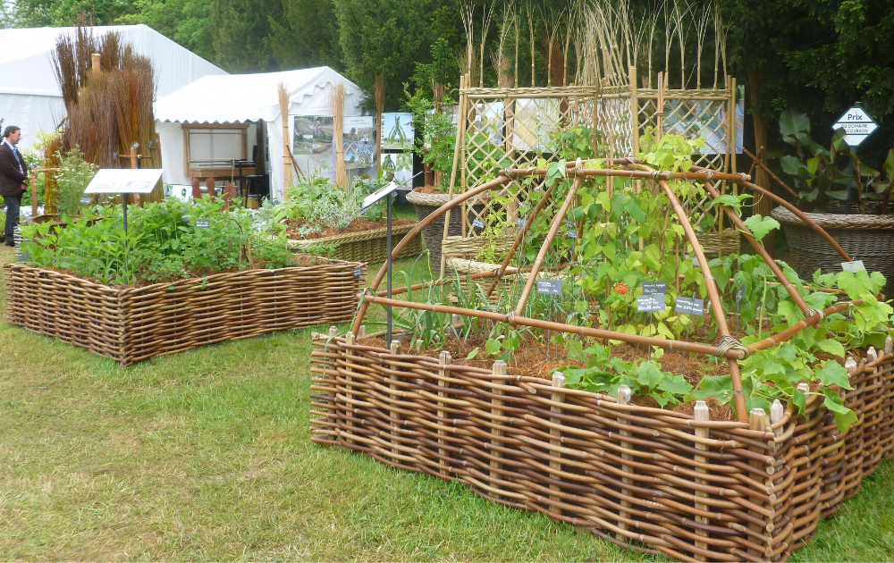 Two square wattles raised bed with trellises.
