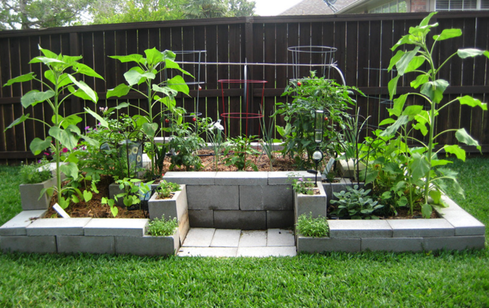 Raised bed built out of cinder blocks with trellises and growing plants