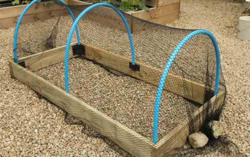 Wooden raised bed with black butterfly netting.